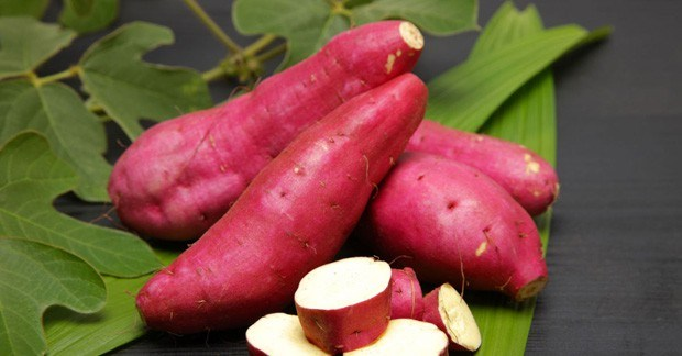 15-loai-thuc-pham-giau-vitamin-e-9