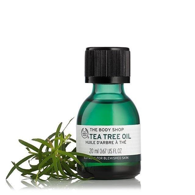 Kem trị mụn bọc Tea Tree Oil