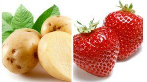 Mặt nạ khoai tây và dâu tây